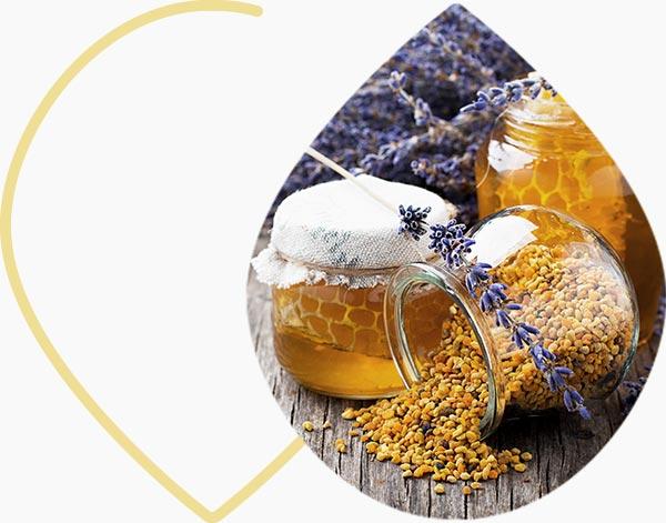Pollen et miel de lavande