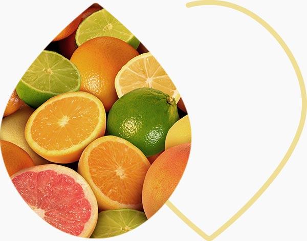 Agrumes sources de vitamine C